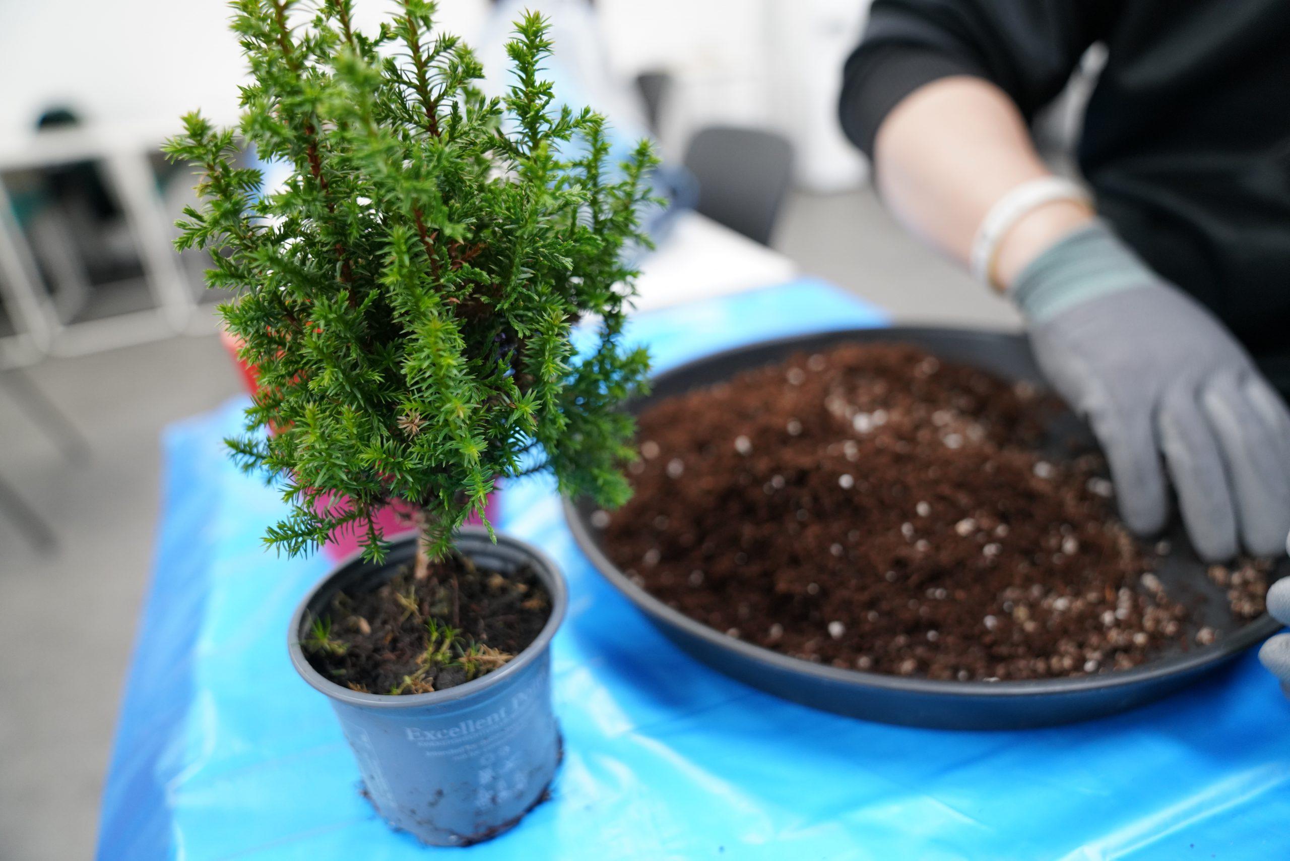 [우리함께 마실가요] 햇살정원과 함께하는 반려식물 오프라인 행사 후기